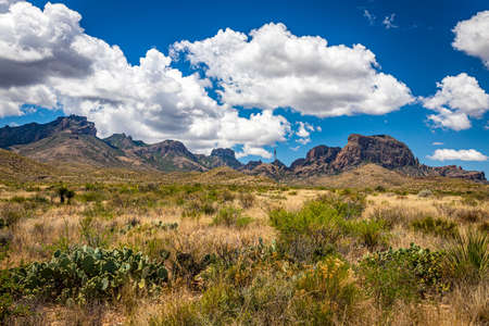View  of Chisos Mountains from Gano Springs Road near Basin Junction Road at Big Bend National Park in Texas. Banco de Imagens