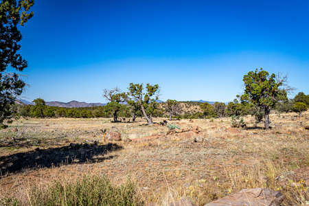 The Coronado Trail Scenic Byway connects Springerville and Clifton, Arizona in the Apache-Sitgreaves National Forest providing spectacular views with elevations reaching over 9,000 feet.