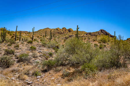 Desert views along Arizona State Rout 88, a former stagecoach route known as the Apache Trail.