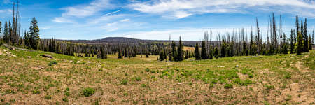 Cedar Breaks National Monument is a natural amphitheater canyon at an elevation of ten thousand feet stretching three miles wide and over a half mile deep near Cedar City, Utah. Zdjęcie Seryjne