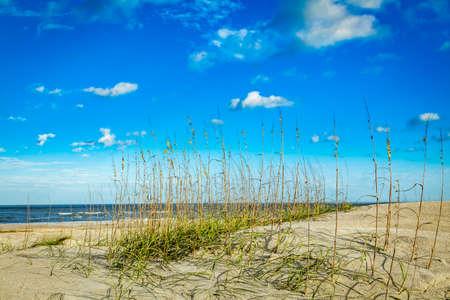 The beach, dunes, and sea oats at Amelia Island near the town of Fernandina Beach, Florida.