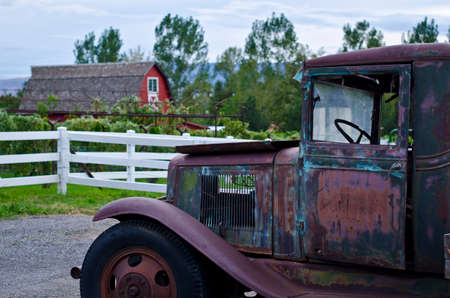 A rusty od truck at a vineyard on a nice spring day.