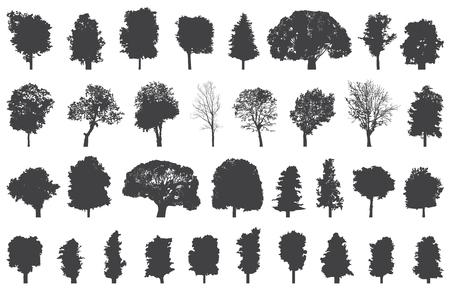 Set di sagome di alberi isolati.