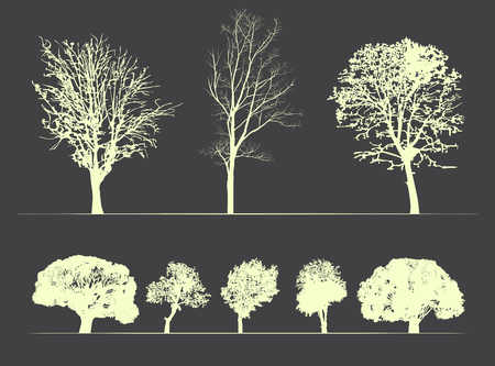 Vector set trees on soft dark background