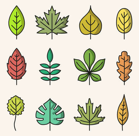 Vector illustration of colorful isolated leaves icons