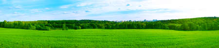 panoramic nature: Panorama of Feild and City in the Middle of the Forest. Beautiful Green Ecological Concept.