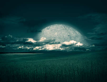 Fantasy Landscape with Wheat Field on the Background of Beautiful Clouds and Rising Moon