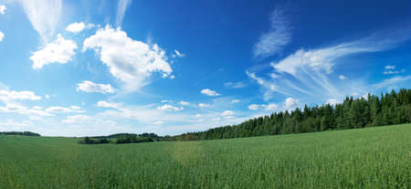 Panoramic Landscape with Green Field on the Background of Beautiful Clouds and Blue Sky Stock Photo