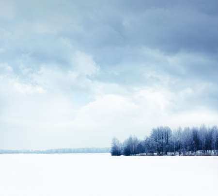Calm Winter Landscape with Snowy Field and Moody Sky