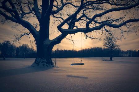 Winterlandschap met Verlaten Tree Swing. Eenzaamheid Concept. Gestemde foto.