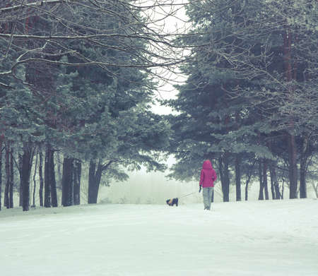 Woman with Small Dog Walking in Snowy Winter Park