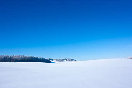 Winter Landscape with Snowy Field and Blue Sky. Copy Space. Stock Photo
