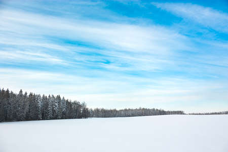 Winter Landscape with Snowy Field and Blue Sky  Copy Space  Stock Photo