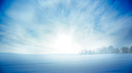 Snowy Landscape with Field and Rising Sun  Copy Space  Beautiful Winter Background