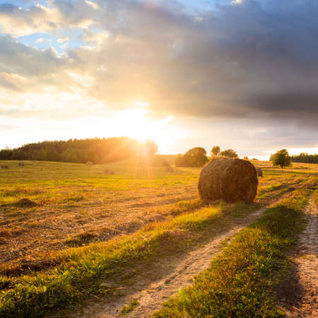 Summer Field with Hay Bales on the Background of Beautiful Sunset. Agriculture Concept. Copy Space. photo