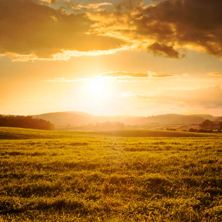 Summer Field and Clouds in Golden Light of Beautiful Sunset  Picturesque Landscape in Warm Colors  Copy Space