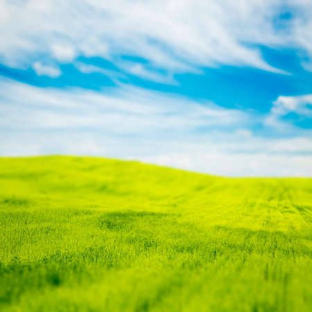 Tilt Shift Photo of Green Field at Spring. Fresh Landscape with Blue Sky and Beautiful Clouds.  Stock Photo