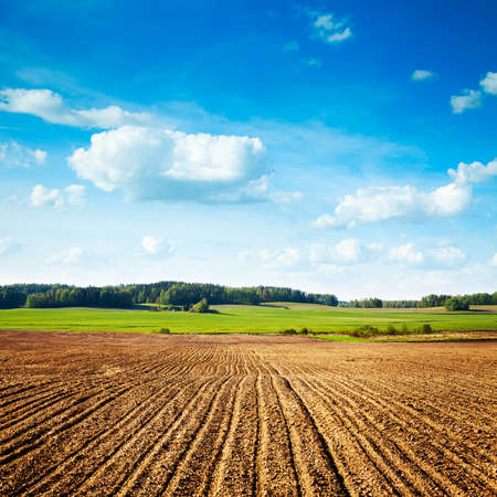 plough land: Spring Landscape with Plowed Field on the Background of Beautiful Clouds and Blue Sky. Ploughed Soil. Agriculture Concept. Copy Space.