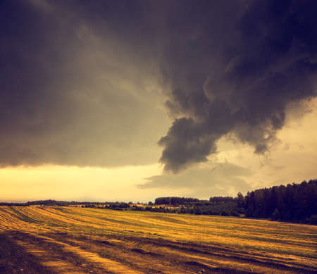 storm clouds: Dark Landscape with Field and Gloomy Sky.