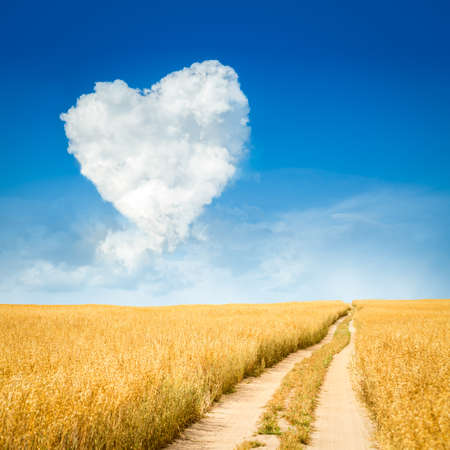 road of love: Heart Shaped Cloud and Yellow Field Landscape. Summer Blue Sky with Copy Space. Love and Valentines Day Concept.