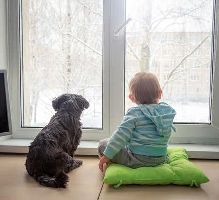 Baby met hond op zoek door een raam in de winter. Achteraanzicht. Jongen en huisdier vrienden Concept. Getinte foto met kopie ruimte. Stockfoto