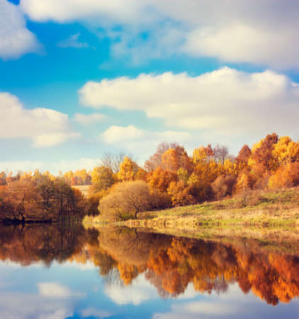Autumn Landscape. Yellow Trees, Blue Sky and Lake. Nature Scenery in Fall. Beautiful Season Background with Reflection in Water. Toned Photo with Copy Space. Banco de Imagens