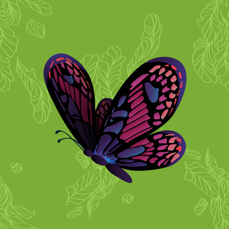 monarch butterfly: Monarch Butterfly on green background. Vector cartoon colorful illustration
