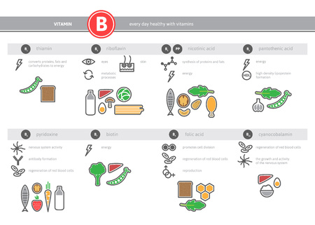 vitamins: Medical vitamin B B1 B2 B3 PP B5 B6 B7 B9 B12 source infographics. Healthy food icons set. Vector proper nutrition colorful outline elements.