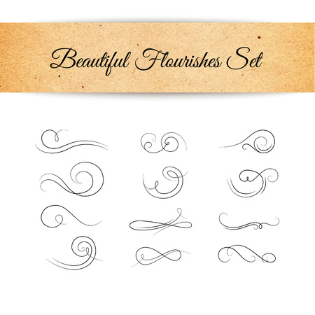 embellishments: Collection of Beautiful Elegant Embellishments Isolated on White. Vector Decorative Flourishes Set. Illustration