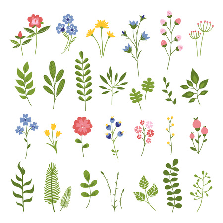 Floral Hand Drawn Vector Set. Flowers and Leaves Collection. Summer Blossom Illustration for Cards, Greetings, Banners, Save the Date, Baby Shower, Mothers Day, Valentines Day, Birthday Cards, Invitations or Web.