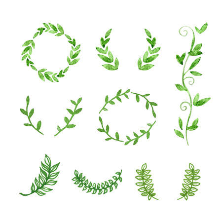 Handgetekende Watercolour Green Natural Frames. Vector grenzen en krans met bladeren. Organische Geïsoleerde Laureltakken.