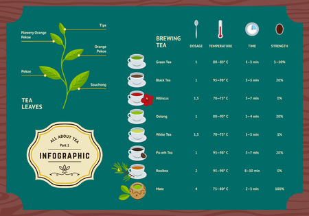or instruction: Vector Set of Tea Infographics. Classification Plants Leaf, Brewing Tea Rules and Scheme Illustration. Flat Information Concept. Illustration