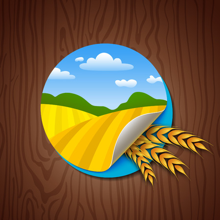 Label cirkel met gele velden en tarwe oren op houten achtergrond. Landbouw Harvest Illustratie. Kleurrijke Sticker voor Verpakking, Logo en Web Design.