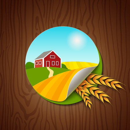 wheat harvest: Circle Label with Yellow and Green Fields, Farmhouse and Wheat Ears on Wood Background. Farming Harvest Illustration. Colorful Sticker for Packaging, Logo and Web Design.