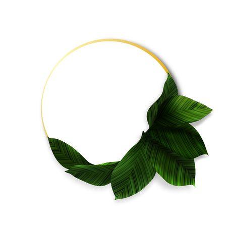 Vector Greenery Composition Design with Textured Leaves. Decorative Element on Circle Shape. Green Wreath Illustration. Ilustração
