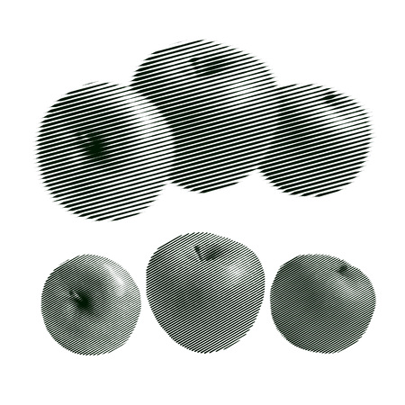 Set of Engraving Apples Isolated on White. Vector Retro Illustration