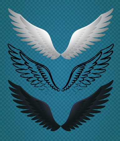 Set of Vector Bird Wings. Minimalist Illustration of White, Black and Sketch Wings. Ilustrace