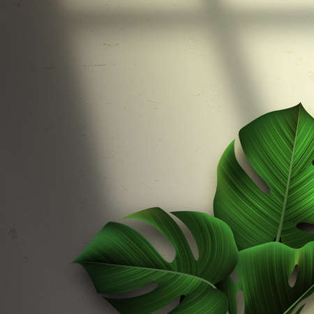 Vector Background with Palm Leaves and Window. Minimal Realistic Tropical Illustration with Shadow Overlay