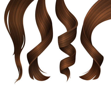 Set of Wavy Strands of Brunette Hair. Vector Realistic 3d Illustration. Vetores