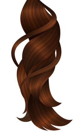 Vector Strand of Shiny Hair. Realistic Dynamic Curls.