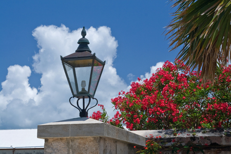 Close up of an old fashioned lampshade flanked by a lush Bougainvillea bush photo