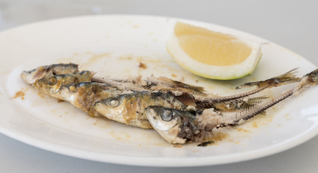 Bones of five eaten Sardines, on a white plate. with the head and tails intact, and a wedge of Lemon on the side