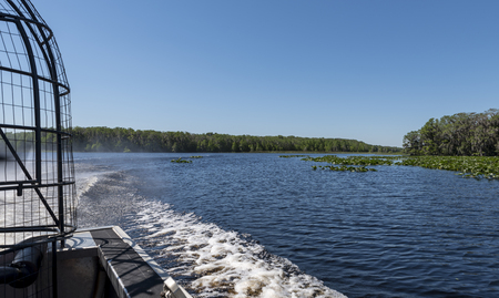 the view behind an air boat, at the wake, on a central Florida lake Фото со стока