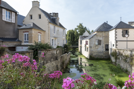 The River Aure in Bayeux, France, framed by vibrant pink flowers on a summers day Stock Photo
