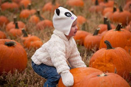 bridget calip: Toddler in the pumpkin patch with cat hat at the Pumpkin Harvest Festival, Denver, Colorado, October 2012 at Four Mile Historic Park
