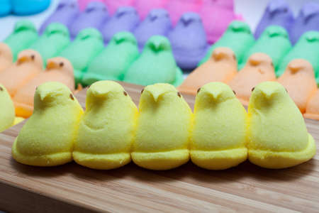 Yellow, Blue, Orange, Green and Purple Marshmallow Peep Chicks Stock Photo - 18533649