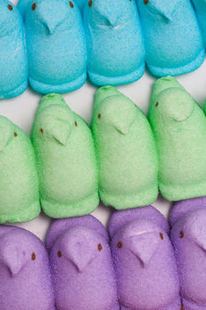 Yellow, Blue, Orange, Green and Purple Marshmallow Peep Chicks Stock Photo - 18533651