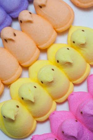 Yellow, Blue, Orange, Green and Purple Marshmallow Peep Chicks Stock Photo - 18533645