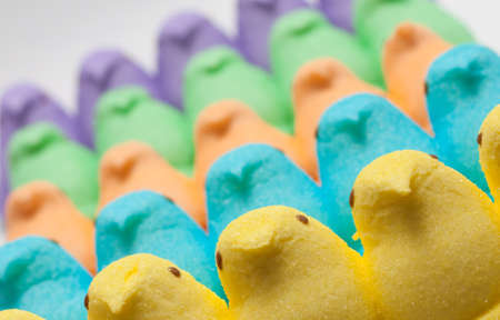 Yellow, Blue, Orange, Green and Purple Marshmallow Peep Chicks Stock Photo - 18533639