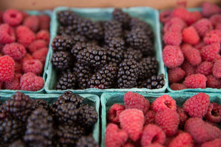Fresh Picked Raspberries and Blackberries in Blue Boxes at Farmers Market photo